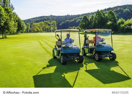 Golfmobil günstig kaufen